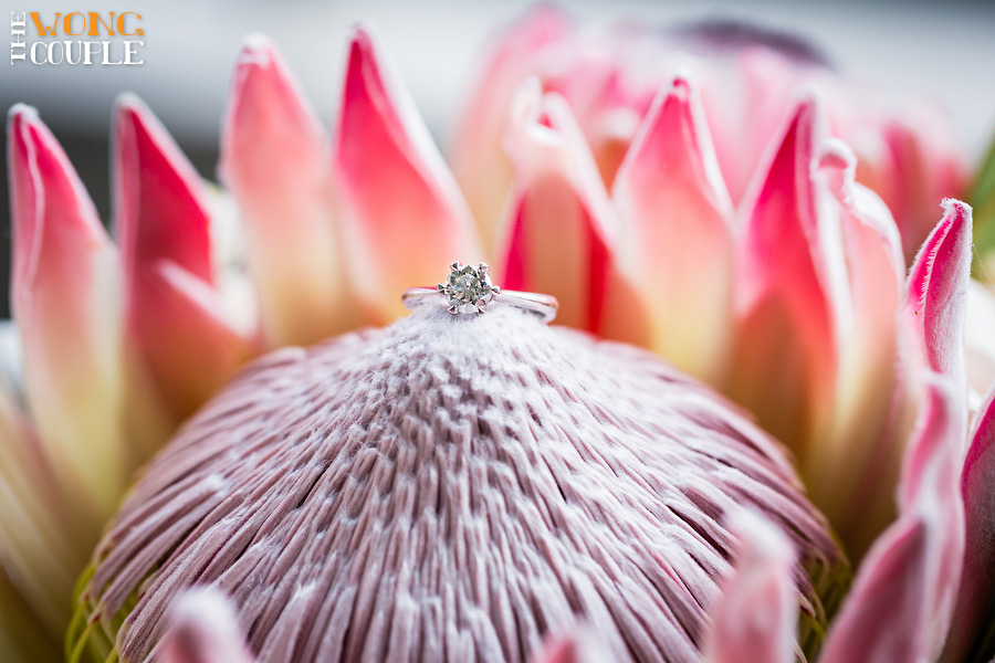 Creative wedding photography, Pink wedding, coral wedding, Australian wildflowers