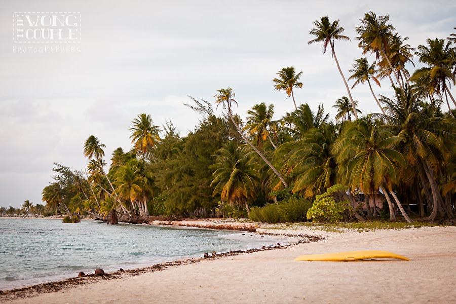 Landscape Photography, Tropical Honeymoon, Beach Photography, Tahiti, French Polynesia, Tikehau