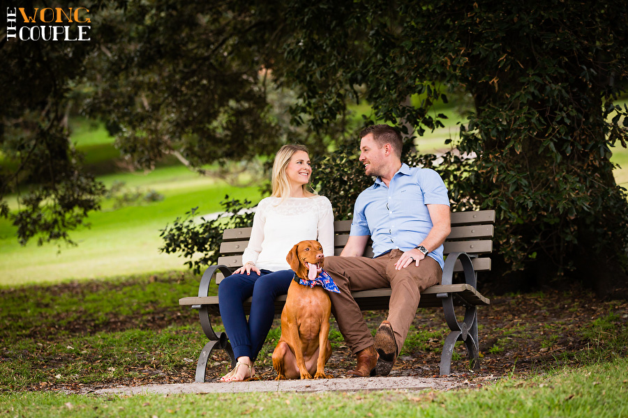 Cute anniversary photo session with pet dog