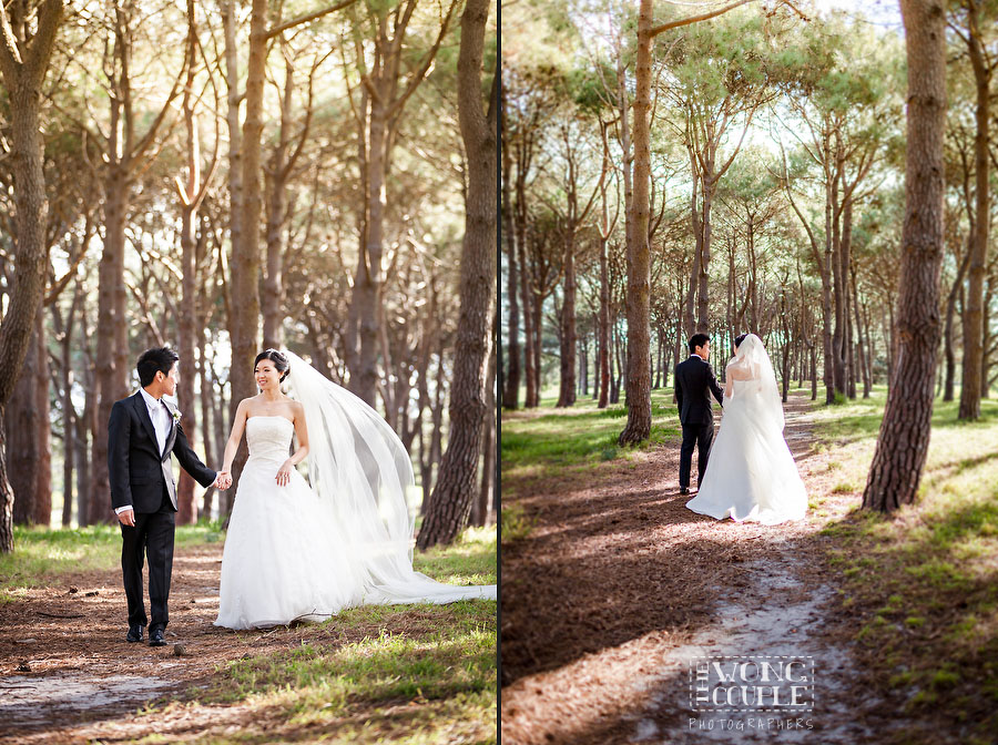 Bridal Party wedding portraits in Centennial Park, Sydney