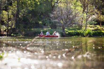 Rowboat Lane Cove National Park Family Photographers
